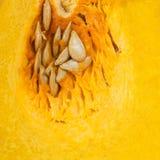 Yellow pumpkin on background Royalty Free Stock Photo