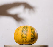 Yellow pumpkin no table with hands shadow on wall stock photography