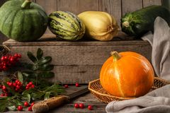Yellow pumpkin on rustic wooden table Stock Image