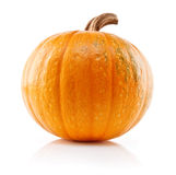 Yellow pumpkin vegetable isolated on white Stock Photos