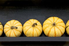 Yellow pumpkins Royalty Free Stock Photos