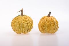 Yellow pumpkins Royalty Free Stock Photos