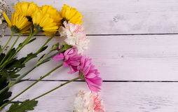 Yellow and purple flower and wood background Stock Image
