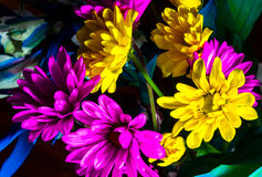 Yellow and Purple Flowers Colorful Arrangement Royalty Free Stock Photos