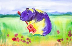 Yellow purple Guinea pig plays a red guitar in a pure summer Russian field with red flowers. Comic watercolor illustration stock image