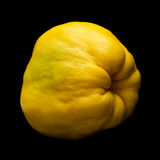 Yellow quince fruit isolated. On black background Stock Photos