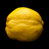 Yellow quince fruit isolated. On black background Royalty Free Stock Photography