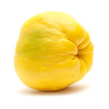 Yellow quince fruit isolated on white. Background Stock Image