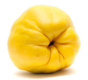 Yellow quince fruit isolated on white. Background Royalty Free Stock Image