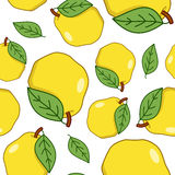 Yellow Quince Fruit Seamless Pattern Stock Image