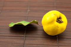 Yellow quinces with a green leaf Stock Photography