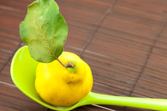 Yellow quinces with a green leaf Stock Image