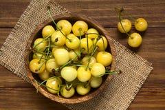 Yellow or Rainier Cherries Stock Images