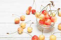 Yellow rainier cherry, close up. Delicacy dessert diet fresh food.  royalty free stock photos