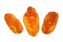 Yellow raisin on white Stock Images
