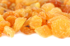 Yellow raisins (sultana) Stock Image