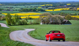 Yellow rapeseed fields and a red car Royalty Free Stock Image
