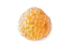 Yellow raspberrie Royalty Free Stock Photos