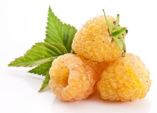Yellow raspberries Stock Photography