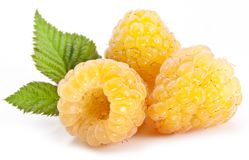 Yellow raspberries. Royalty Free Stock Images