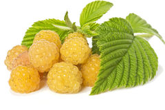 Yellow raspberries. On white background Stock Images
