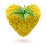 Yellow raspberry heart. Stock Photography