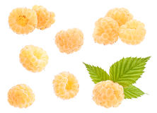 Yellow raspberry set Stock Photography