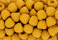 Yellow raspberry texture or background Stock Images