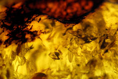 Yellow-red amber closeup Royalty Free Stock Photography