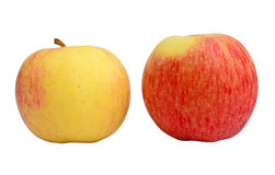 Yellow and Red Apples Royalty Free Stock Photos