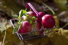 Yellow and red autumn apples in a shopping basket Stock Photo