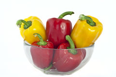 Yellow and Red Bell pepper Stock Photography