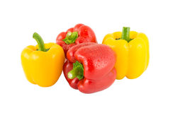 Yellow and red bell pepper. S  on white background Royalty Free Stock Photography