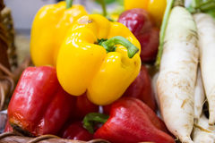 Yellow and red bell sweet pepper and radish Stock Photos