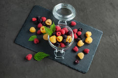 Yellow, red and black raspberries Stock Photography