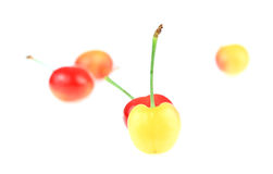 Yellow & Red Cherries. This is a photo of some yellow and red cherries Stock Photos