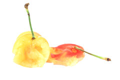 Yellow & Red Cherries. This is a photo of some yellow and red cherries that have been squashed Royalty Free Stock Photos