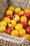 Yellow and red cherry tomatoes. In a basket royalty free stock images