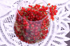 Yellow and red currant in balloon wine glass Stock Image