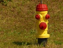 Yellow and red fire hydrant Stock Photos