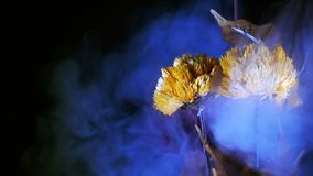 Yellow and Red Flowers. And Smoke Video stock footage