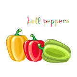 Yellow, red and green bell peppers. Stock Photo