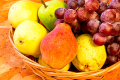 Yellow, red and green pears with bunch of grapes. Yellow, red and green pears with bunch of red grapes in woven basket on wooden table Royalty Free Stock Photo