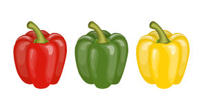 Yellow, red and green pepper. Set of three peppers. Yellow, red and green pepper. vector illustration in flat style Royalty Free Stock Images