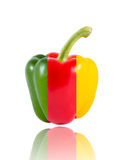 Yellow red and green Sweet bell pepper (capsicum) Royalty Free Stock Image