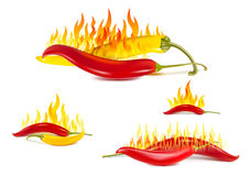 Yellow and red hot chili pepper Royalty Free Stock Photos