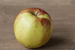 Yellow and red jonagold apples on wooden background. Close up of jonagold apples on kitchen wooden table Stock Images