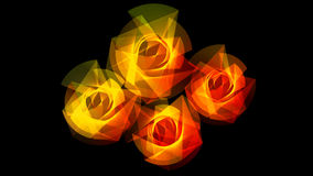 Yellow & Red Light Flowers. Futuristic light flowers in yellow and red harmonic lines Stock Photography
