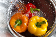 Yellow Red and Orange Bell Pepper. Yellow, red, and orange bell peppers washed in stainless steel metal colander Royalty Free Stock Images