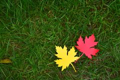 Yellow and red paper maple leaf on green grass. Hello Autumn concept. Handmade crafts. Children's DIY. Copy space. Yellow and red paper maple leaf on green royalty free stock images